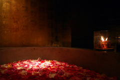 Rose Petals Bath. Red and Pink Rose Petals Bath relaxing and soothing Stock Image
