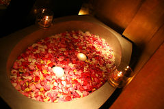 Rose Petals Bath. Red and Pink Rose Petals Bath relaxing and soothing Stock Photos