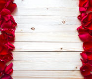 Rose Petals Border Fotografia Stock