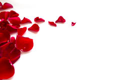 Rose Petals Border. Isolated on white background stock images