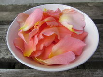 Rose petals. In the bowl Stock Image
