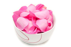 Rose petals. In a bowl isolated on white stock photography