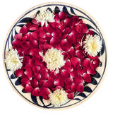 Rose Petals In Bowl som isoleras Royaltyfria Foton