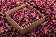 Rose petals in box and as a background. Dried  rose petals in box and as a background stock images