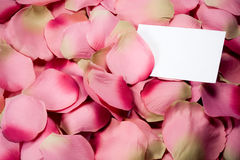 Rose petals (cloth) with white card Stock Photos
