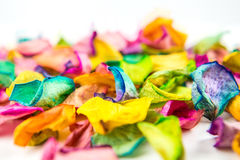Rose petals. Colorful rose petals background closeup royalty free stock photography