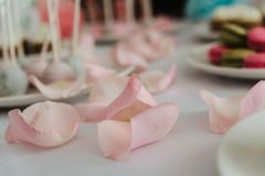 Rose petals on dessert table. Fresh rose petals on light dessert table Stock Photography