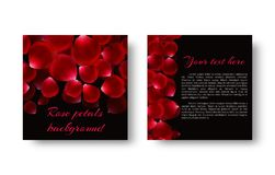 Rose petals fall on a black background. Celebratory romantic background with falling petals of red roses Royalty Free Stock Photo