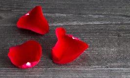 Rose Petals Fallen rouge sur Grey Wooden Table photos stock