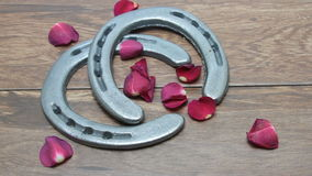Rose petals falling on horseshoes. Red rose petals falling over silver horse shoes on barn wood planks stock footage
