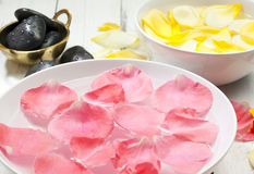Rose petals floating in bowls Stock Image