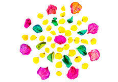 Rose petals flower royalty free stock image