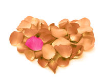 Rose petals in a form of heart shape Royalty Free Stock Image