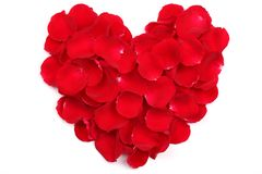 Rose petals forming heart shape Royalty Free Stock Images