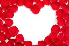 Rose petals forming heart-shaped frame Stock Photo