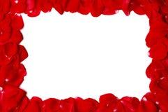 Free Rose Petals Frame Stock Photos - 20743833