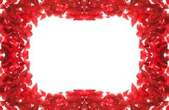 Rose petals frame Royalty Free Stock Images