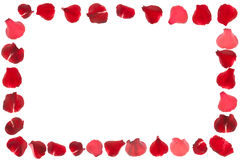 Rose petals frame isolated Stock Photography
