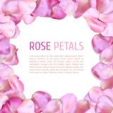 Rose petals frame Stock Images