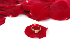 Rose petals and golden rings Stock Photos