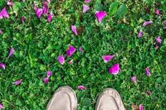 Rose petals and feet. Rose petals on green grass stock photos
