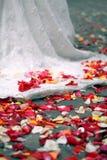 Rose petals on ground. Near wedding dress stock photos