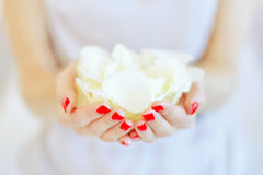 Rose petals in hands Royalty Free Stock Photography