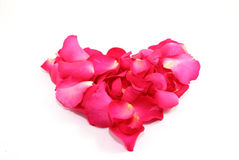 Heart made from Rose petals Stock Image