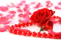 Rose and petals with heart ans beads  Stock Photography