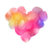 Rose petals heart. Colorful petals heart on white background stock images