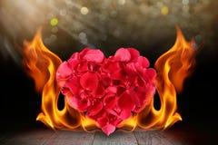 Rose petals heart shape with blaze fire flame on wooden deck vector illustration