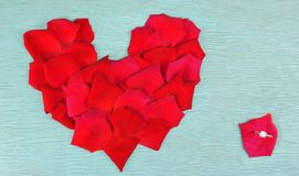 Rose petals in heart shape Stock Photos