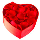 Rose petals in a heart shaped box. Rose petals in red heart shaped box isolated on a white background royalty free stock photos
