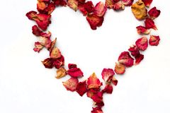 Rose petals in heart symbol isolated on white. Background royalty free stock photos