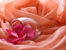 Rose petals i ett exponeringsglas Royaltyfri Foto