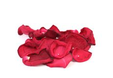 Rose petals isolated on white Royalty Free Stock Photos
