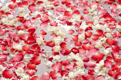 Rose petals and jasmine in the jacuzzi Stock Photo