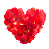 Rose petals are laid out in a heart shape Royalty Free Stock Photo