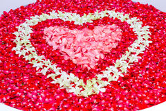 Rose petals and leelawadee with heart shape decoration in bathtu Royalty Free Stock Images