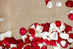 Rose Petals on Linen. Material Background. Floral Background with Copy Space Royalty Free Stock Photo