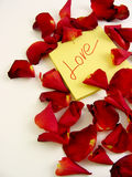 Rose petals with love message. Red rose petals surrounding a post-it with love message text Royalty Free Stock Photography