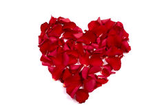 Rose petals made of heart Stock Image
