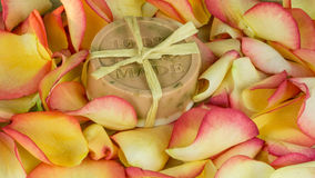 Rose petals in many colors - handmade Stock Photos
