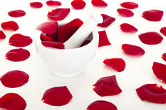 Rose petals with mortar Stock Images