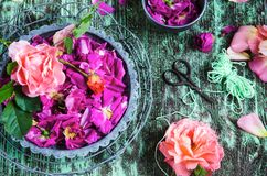 Rose petals in a mortar Royalty Free Stock Images