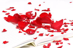 Rose Petals on the Notebook Stock Photos