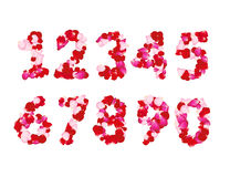 Rose petals numbers set. Set of romantic numbers type Stock Images