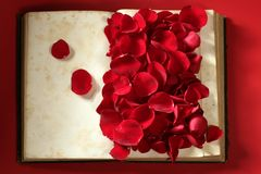 Rose petals over old aged book Stock Images