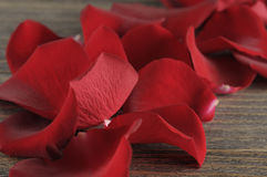 Rose petals over wooden background. Stock Photo