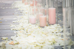 Rose petals. A path of white rose petals and a pink candle Royalty Free Stock Photo